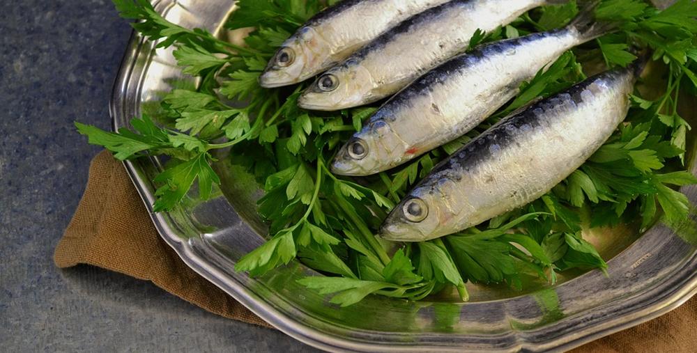 Restaurants de poissons