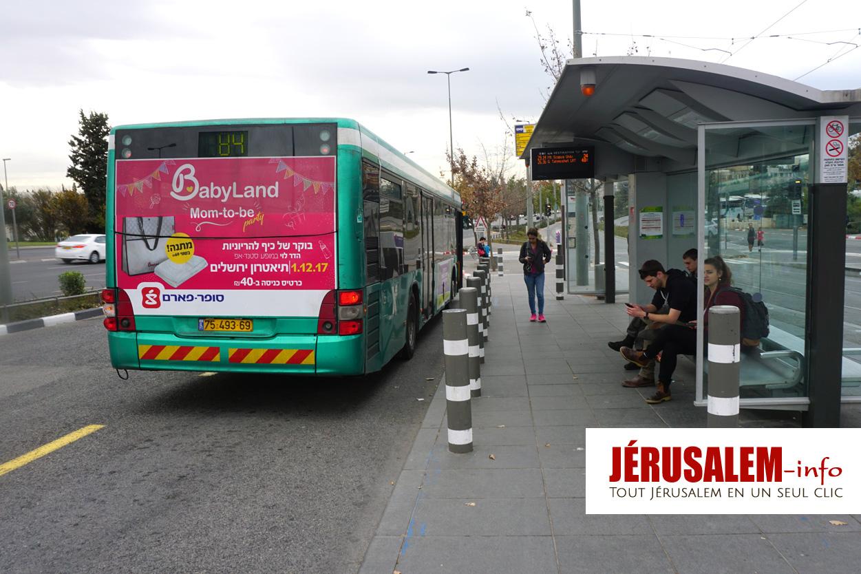autobus 84