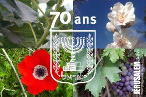 tou beav israel jerusalem