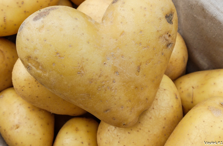 pommes de terre israel jerusalem coeur