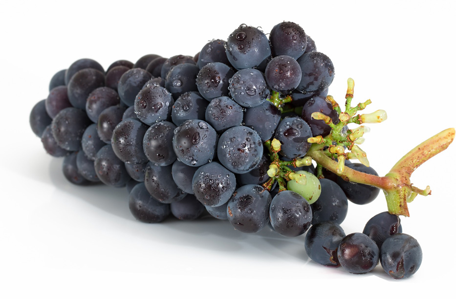 vin jerusalem israel