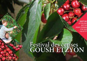 cerise goush jerusalem festival